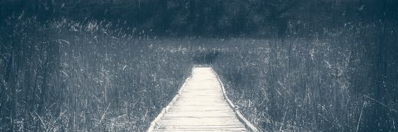The Boardwalk to Emerald Spring