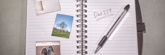 The Notebook: Day 229
