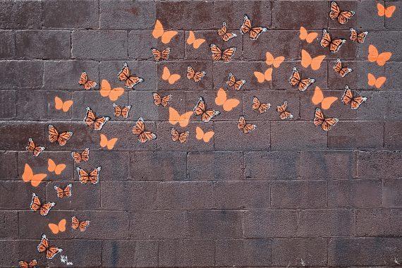The Butterfly Effect - Stencil by Jeremy Novy, www.jeremynovy.com